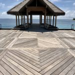 Exterpark Magnet Angelim Amargoso - Maldive
