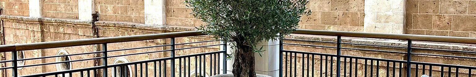 Exterpark Spina Teak per terrazza – Libano